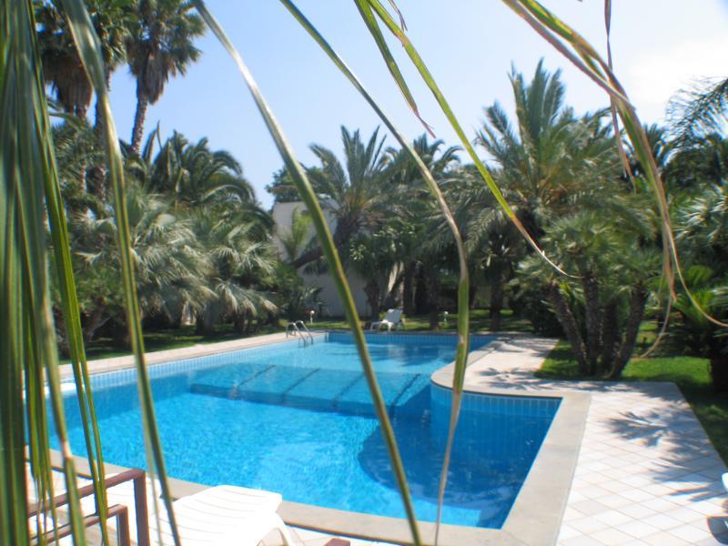 Holidays in sicilia agriturismo con piscina cuore di palme - Agriturismo in sicilia con piscina ...